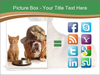 0000096545 PowerPoint Template - Slide 21