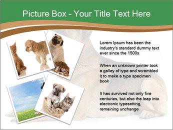 0000096545 PowerPoint Template - Slide 23