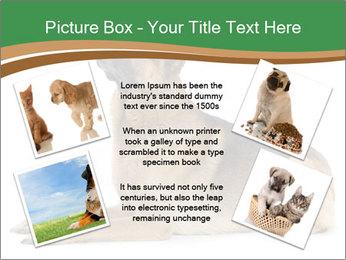 0000096545 PowerPoint Template - Slide 24