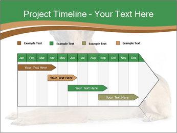 0000096545 PowerPoint Template - Slide 25