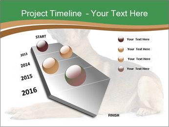 0000096545 PowerPoint Template - Slide 26