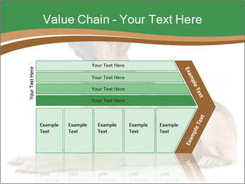 0000096545 PowerPoint Template - Slide 27