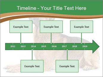 0000096545 PowerPoint Template - Slide 28