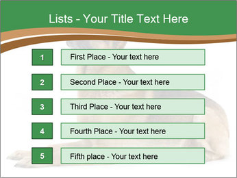 0000096545 PowerPoint Template - Slide 3
