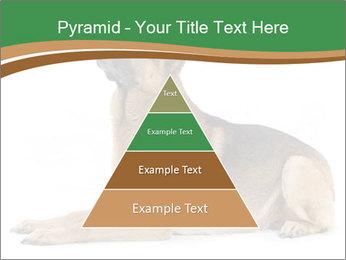 0000096545 PowerPoint Template - Slide 30