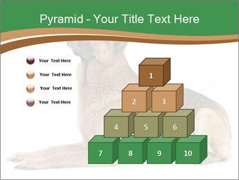 0000096545 PowerPoint Template - Slide 31