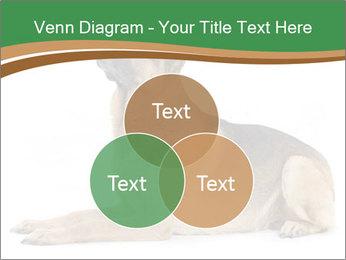 0000096545 PowerPoint Template - Slide 33