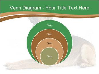 0000096545 PowerPoint Template - Slide 34