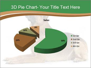 0000096545 PowerPoint Template - Slide 35
