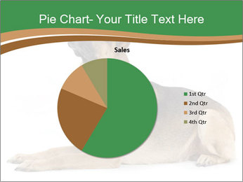 0000096545 PowerPoint Template - Slide 36
