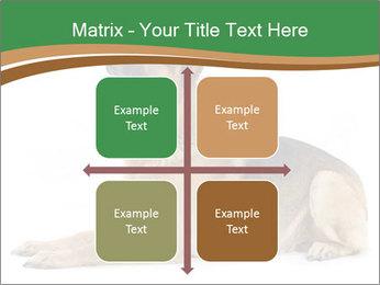 0000096545 PowerPoint Template - Slide 37