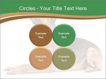 0000096545 PowerPoint Template - Slide 38