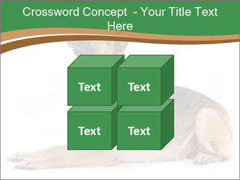 0000096545 PowerPoint Template - Slide 39