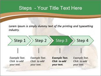 0000096545 PowerPoint Template - Slide 4