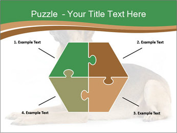 0000096545 PowerPoint Template - Slide 40