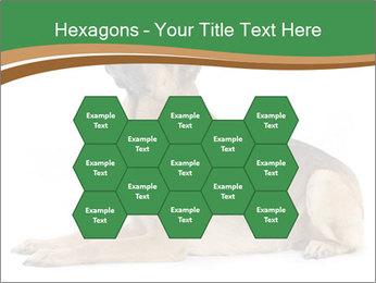 0000096545 PowerPoint Template - Slide 44