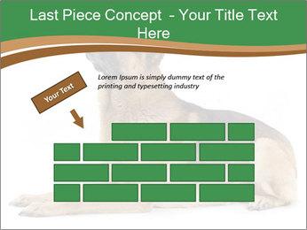 0000096545 PowerPoint Template - Slide 46