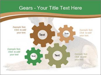 0000096545 PowerPoint Template - Slide 47