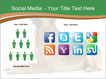 0000096545 PowerPoint Template - Slide 5