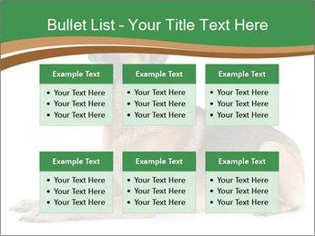 0000096545 PowerPoint Template - Slide 56