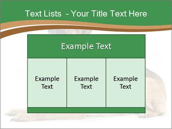 0000096545 PowerPoint Template - Slide 59