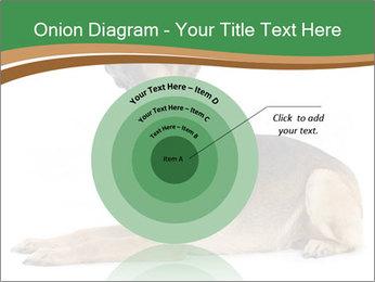 0000096545 PowerPoint Template - Slide 61