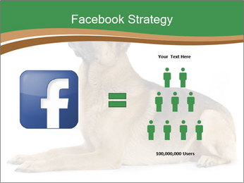 0000096545 PowerPoint Template - Slide 7