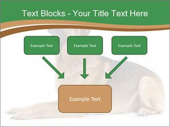 0000096545 PowerPoint Template - Slide 70