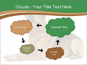 0000096545 PowerPoint Template - Slide 72
