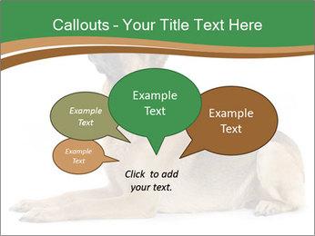 0000096545 PowerPoint Template - Slide 73