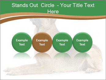0000096545 PowerPoint Template - Slide 76