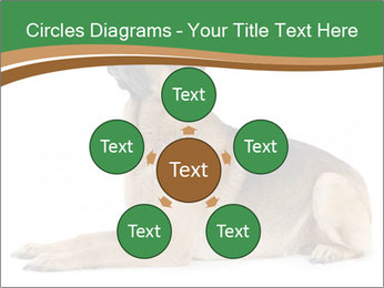 0000096545 PowerPoint Template - Slide 78