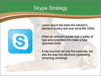 0000096545 PowerPoint Template - Slide 8