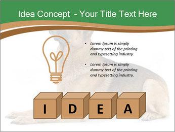0000096545 PowerPoint Template - Slide 80