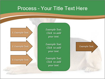 0000096545 PowerPoint Template - Slide 85