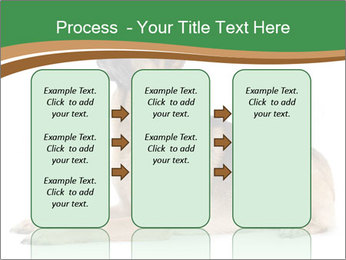 0000096545 PowerPoint Template - Slide 86