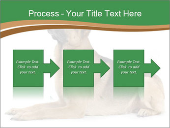 0000096545 PowerPoint Template - Slide 88