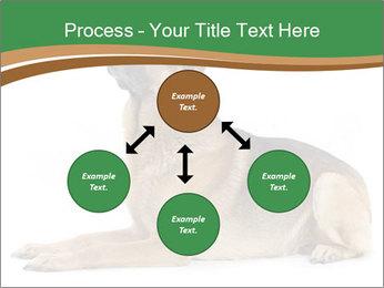 0000096545 PowerPoint Template - Slide 91
