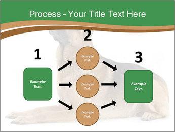 0000096545 PowerPoint Template - Slide 92