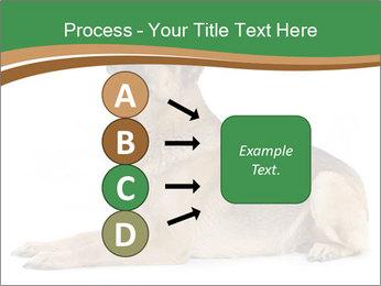 0000096545 PowerPoint Template - Slide 94