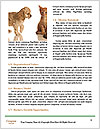 0000096545 Word Template - Page 4