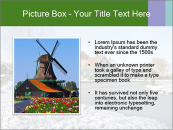 0000096546 PowerPoint Template - Slide 13