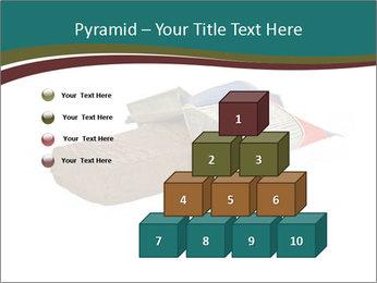 0000096553 PowerPoint Template - Slide 31