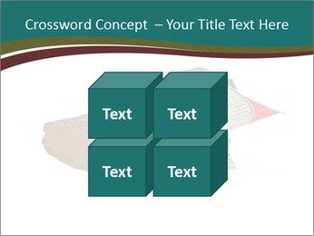 0000096553 PowerPoint Template - Slide 39