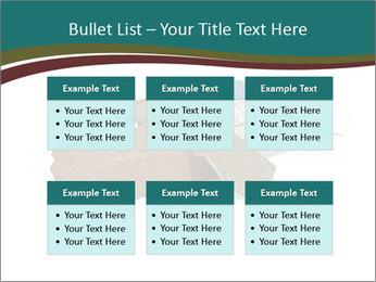 0000096553 PowerPoint Template - Slide 56
