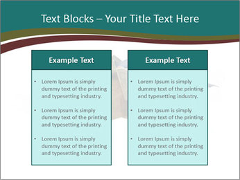 0000096553 PowerPoint Template - Slide 57