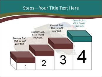 0000096553 PowerPoint Template - Slide 64
