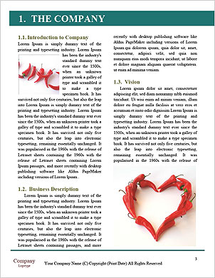 0000096553 Word Template - Page 3