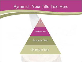 0000096554 PowerPoint Template - Slide 30