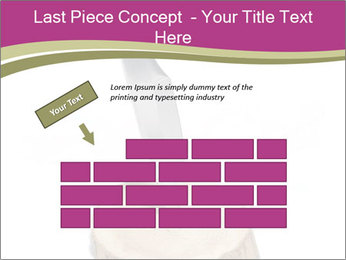 0000096554 PowerPoint Template - Slide 46